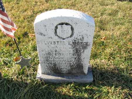 BORGER, PVT.SYLVESTER T. - Lehigh County, Pennsylvania | PVT.SYLVESTER T. BORGER - Pennsylvania Gravestone Photos