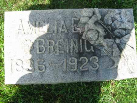 BREINIG, AMELIA - Lehigh County, Pennsylvania   AMELIA BREINIG - Pennsylvania Gravestone Photos