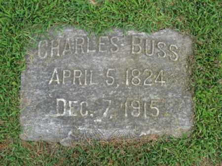 BUSS (CW), CHARLES - Lehigh County, Pennsylvania | CHARLES BUSS (CW) - Pennsylvania Gravestone Photos