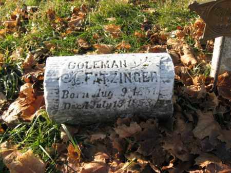 FATZINGER, COLEMAN - Lehigh County, Pennsylvania   COLEMAN FATZINGER - Pennsylvania Gravestone Photos