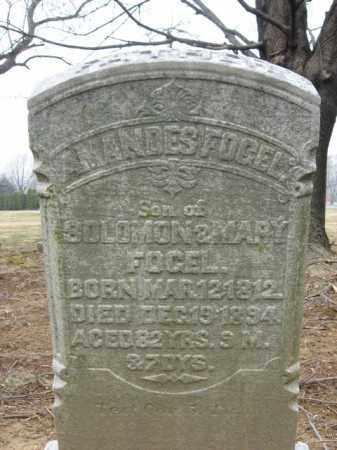 FOGEL, AMANDES - Lehigh County, Pennsylvania | AMANDES FOGEL - Pennsylvania Gravestone Photos