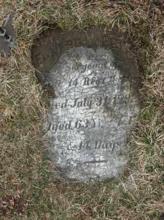 FREID   (CW), SGT.EDWARD - Lehigh County, Pennsylvania   SGT.EDWARD FREID   (CW) - Pennsylvania Gravestone Photos