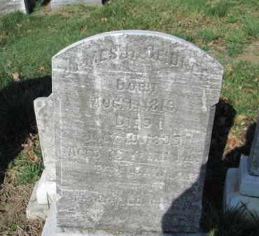 GEIDNER (CW), JAMES H. - Lehigh County, Pennsylvania | JAMES H. GEIDNER (CW) - Pennsylvania Gravestone Photos