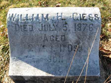 GEISS, WILLIAM H - Lehigh County, Pennsylvania | WILLIAM H GEISS - Pennsylvania Gravestone Photos
