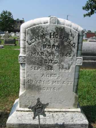 HOSFELD, LEWIS - Lehigh County, Pennsylvania | LEWIS HOSFELD - Pennsylvania Gravestone Photos