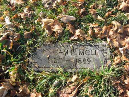 MOLL, WILLIAM H. - Lehigh County, Pennsylvania | WILLIAM H. MOLL - Pennsylvania Gravestone Photos