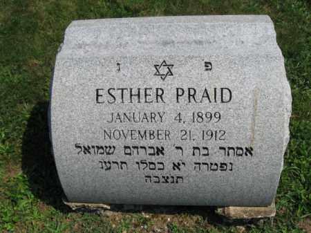 PRAID, ESTHER - Lehigh County, Pennsylvania | ESTHER PRAID - Pennsylvania Gravestone Photos