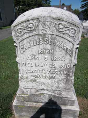 SCHWARTZ, CHARLES - Lehigh County, Pennsylvania   CHARLES SCHWARTZ - Pennsylvania Gravestone Photos