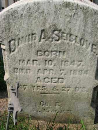 SEISLOVE, DAAVID A. - Lehigh County, Pennsylvania   DAAVID A. SEISLOVE - Pennsylvania Gravestone Photos