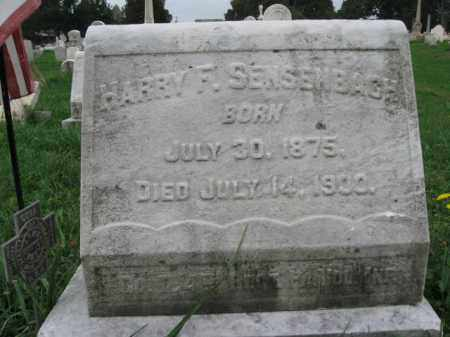 SENSENBACH, HARRY F. - Lehigh County, Pennsylvania | HARRY F. SENSENBACH - Pennsylvania Gravestone Photos