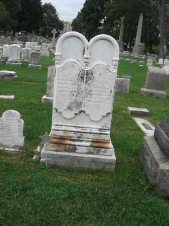 STECKEL, CARRIE M. - Lehigh County, Pennsylvania | CARRIE M. STECKEL - Pennsylvania Gravestone Photos