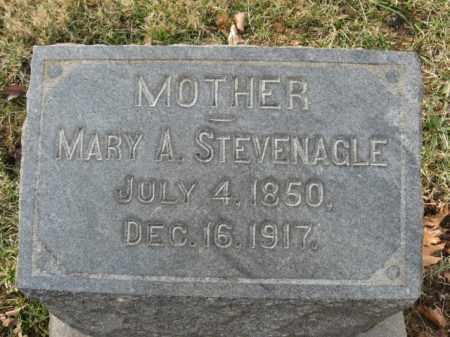 STEVENAGLE, MARY A. - Lehigh County, Pennsylvania   MARY A. STEVENAGLE - Pennsylvania Gravestone Photos