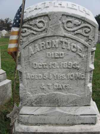 TICE, AARON - Lehigh County, Pennsylvania   AARON TICE - Pennsylvania Gravestone Photos