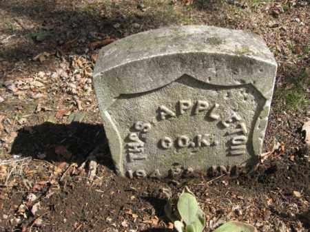 APPLETON (CW), THOMAS - Luzerne County, Pennsylvania | THOMAS APPLETON (CW) - Pennsylvania Gravestone Photos