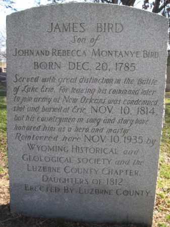 BIRD  (W 1812), JAMES - Luzerne County, Pennsylvania | JAMES BIRD  (W 1812) - Pennsylvania Gravestone Photos