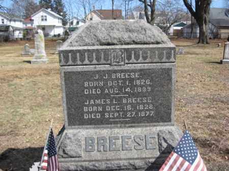 BREESE (CW), JAMES L. - Luzerne County, Pennsylvania   JAMES L. BREESE (CW) - Pennsylvania Gravestone Photos