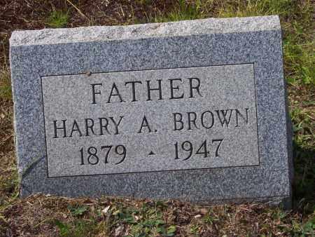 BROWN, HARRY A. - Luzerne County, Pennsylvania | HARRY A. BROWN - Pennsylvania Gravestone Photos