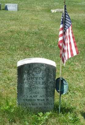 BRUZGULIS,JR, JOHN - Luzerne County, Pennsylvania | JOHN BRUZGULIS,JR - Pennsylvania Gravestone Photos