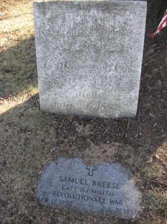 REESE (RW), SAMUEL - Luzerne County, Pennsylvania   SAMUEL REESE (RW) - Pennsylvania Gravestone Photos