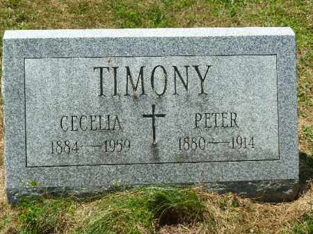 TIMONY, PETER - Luzerne County, Pennsylvania | PETER TIMONY - Pennsylvania Gravestone Photos