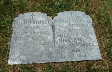 TRIMBLE, HUGH - Luzerne County, Pennsylvania | HUGH TRIMBLE - Pennsylvania Gravestone Photos