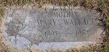 JAMA WALLACE, MARY - Luzerne County, Pennsylvania | MARY JAMA WALLACE - Pennsylvania Gravestone Photos
