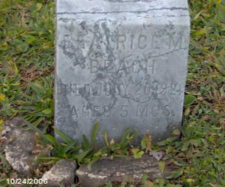BEACH, BEATRICE - Lycoming County, Pennsylvania | BEATRICE BEACH - Pennsylvania Gravestone Photos