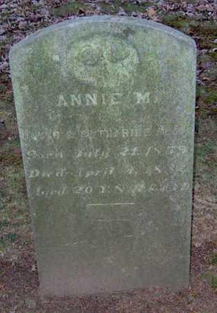 BLAIR, ANNA - Lycoming County, Pennsylvania | ANNA BLAIR - Pennsylvania Gravestone Photos