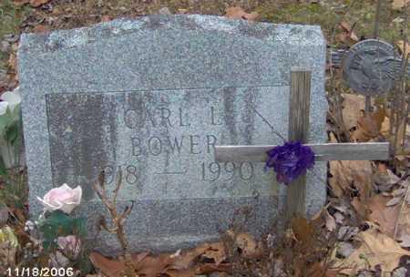 BOWER, CARL - Lycoming County, Pennsylvania | CARL BOWER - Pennsylvania Gravestone Photos