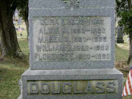 DOUGLASS, MABEL - Lycoming County, Pennsylvania | MABEL DOUGLASS - Pennsylvania Gravestone Photos