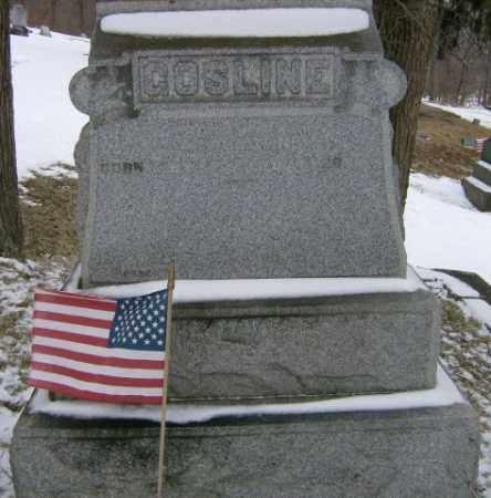 GOSLINE, WILLIAM - Lycoming County, Pennsylvania | WILLIAM GOSLINE - Pennsylvania Gravestone Photos