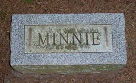 HENSLER, MINNIE - Lycoming County, Pennsylvania | MINNIE HENSLER - Pennsylvania Gravestone Photos