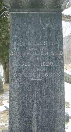 HOWARD, CHARLES - Lycoming County, Pennsylvania | CHARLES HOWARD - Pennsylvania Gravestone Photos