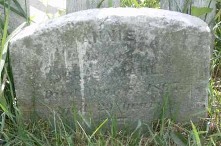MAHL, ANNIE - Lycoming County, Pennsylvania   ANNIE MAHL - Pennsylvania Gravestone Photos