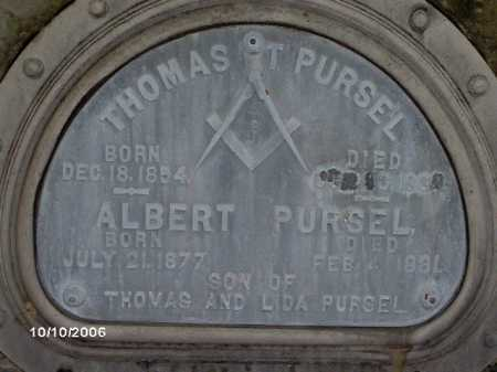 PURSEL, ALBERT - Lycoming County, Pennsylvania | ALBERT PURSEL - Pennsylvania Gravestone Photos