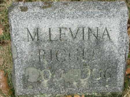 RIGGLE, M. - Lycoming County, Pennsylvania | M. RIGGLE - Pennsylvania Gravestone Photos