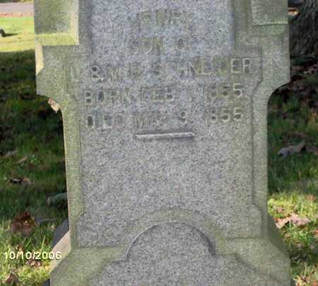 SCHNEIDER, HARRY - Lycoming County, Pennsylvania | HARRY SCHNEIDER - Pennsylvania Gravestone Photos