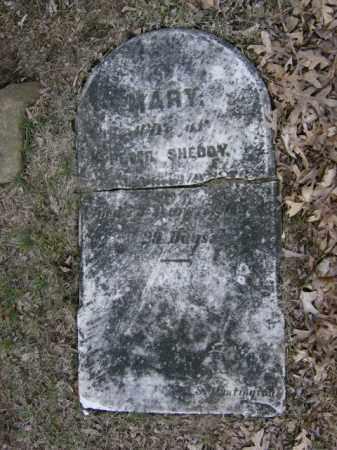 SHEDDY, MARY - Lycoming County, Pennsylvania   MARY SHEDDY - Pennsylvania Gravestone Photos