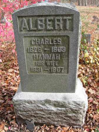 ALBERT (CW), CHARLES - Monroe County, Pennsylvania | CHARLES ALBERT (CW) - Pennsylvania Gravestone Photos