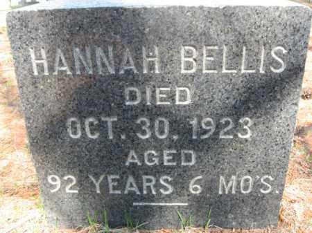 BELLIS, HANNAH - Monroe County, Pennsylvania   HANNAH BELLIS - Pennsylvania Gravestone Photos