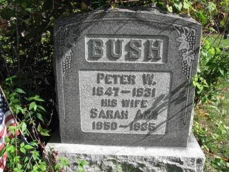 BUSH, SARAH ANN - Monroe County, Pennsylvania | SARAH ANN BUSH - Pennsylvania Gravestone Photos