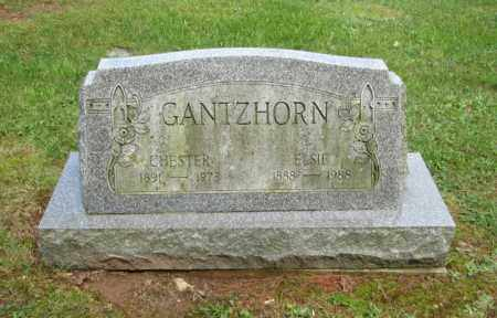 GANTZHORN, CHESTER - Monroe County, Pennsylvania | CHESTER GANTZHORN - Pennsylvania Gravestone Photos