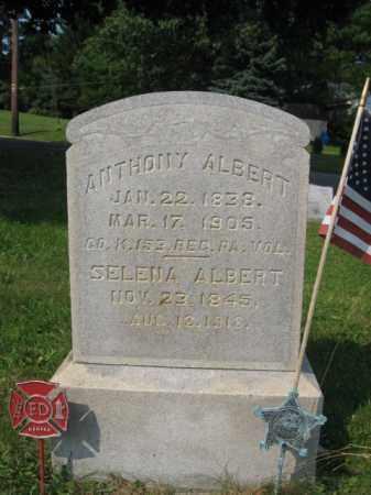 ALBERT, ANTHONY - Northampton County, Pennsylvania | ANTHONY ALBERT - Pennsylvania Gravestone Photos