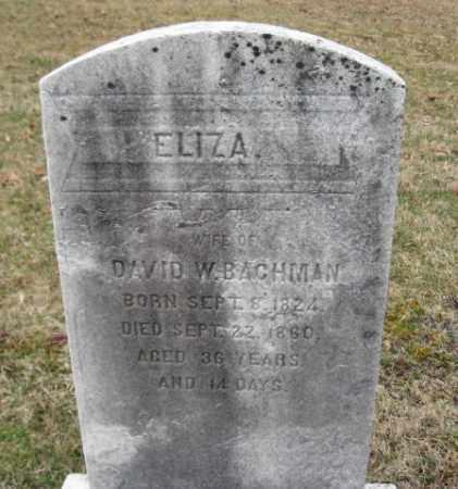 BACHMAN, ELISA - Northampton County, Pennsylvania | ELISA BACHMAN - Pennsylvania Gravestone Photos