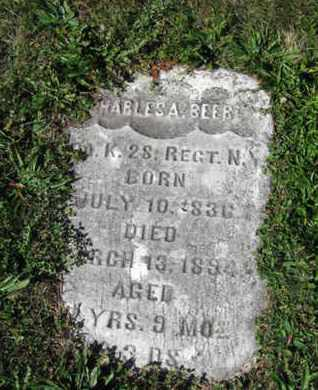 BEEBE (CW), CHARLES A. - Northampton County, Pennsylvania   CHARLES A. BEEBE (CW) - Pennsylvania Gravestone Photos