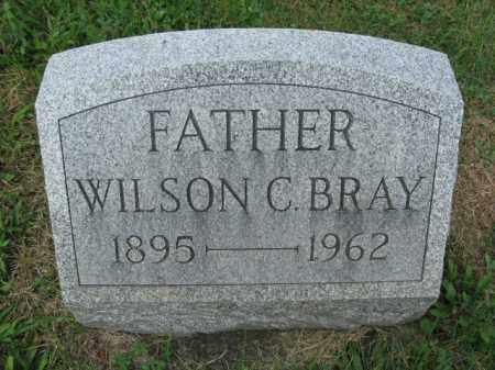 BRAY, WILSON - Northampton County, Pennsylvania | WILSON BRAY - Pennsylvania Gravestone Photos