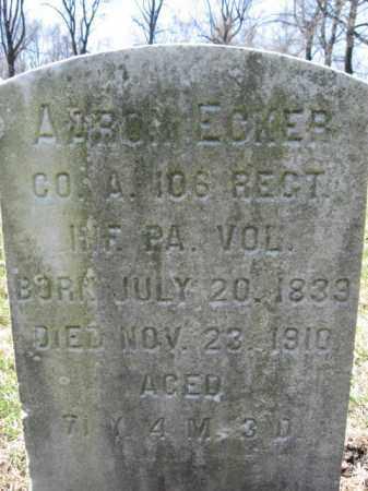 ECKER (CW), AARON - Northampton County, Pennsylvania | AARON ECKER (CW) - Pennsylvania Gravestone Photos