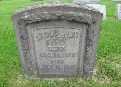 EVERHART, JACOB - Northampton County, Pennsylvania | JACOB EVERHART - Pennsylvania Gravestone Photos