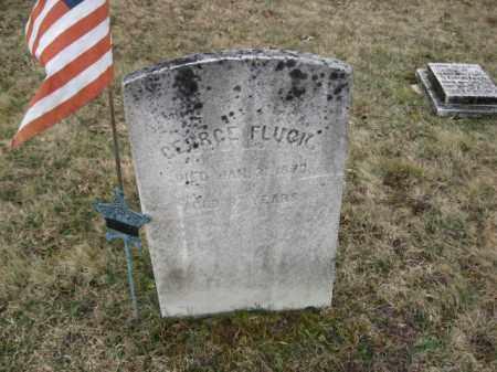 FLUCK, GEORGE - Northampton County, Pennsylvania | GEORGE FLUCK - Pennsylvania Gravestone Photos