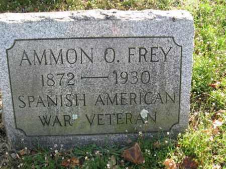 FREY (SAW), AMMON O. - Northampton County, Pennsylvania | AMMON O. FREY (SAW) - Pennsylvania Gravestone Photos
